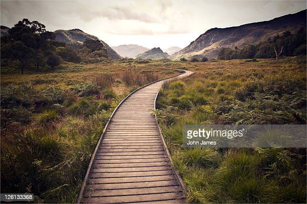 wooden walkway - keswick stock photos and pictures