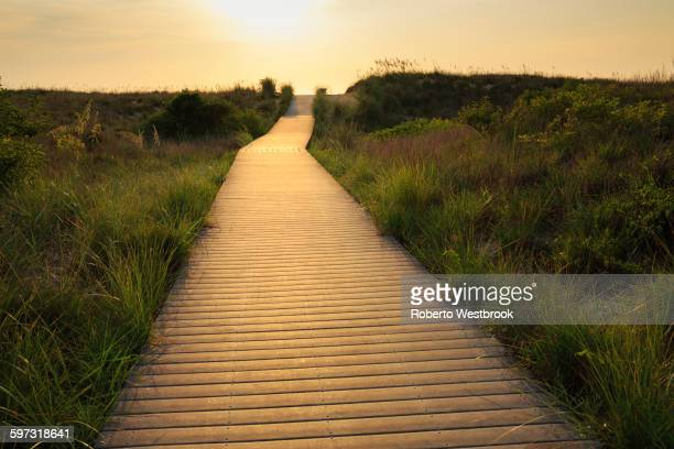 wooden walkway to beach - virginia beach stock photos and pictures