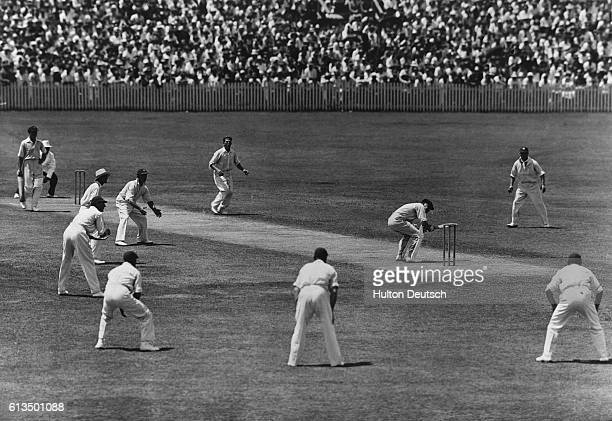 Woodful Ducks A Ball From Larwood During The Fourth Test At Brisbane By This Time Relations Between The Two Countries Were Decidedly Strained