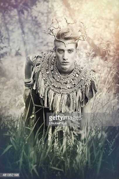 woodland märchen mit king-size-bett - könig königliche persönlichkeit stock-fotos und bilder