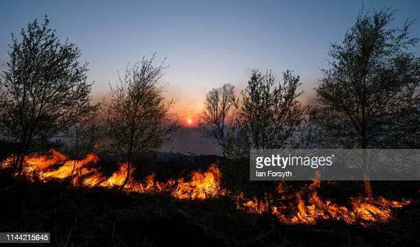 A woodland fire burns in the hills above Guisborough as firefighters from Cleveland Fire Brigade move into positions to fight the fire on April 21...