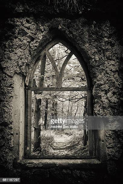 Woodland viewed through an ancient arched window