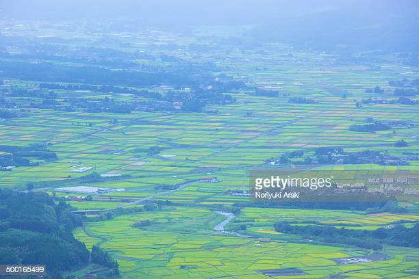 woodlands and rice fields of japan - minamiaso kumamoto stock pictures, royalty-free photos & images