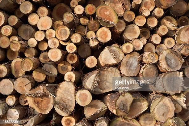 wood,lumber