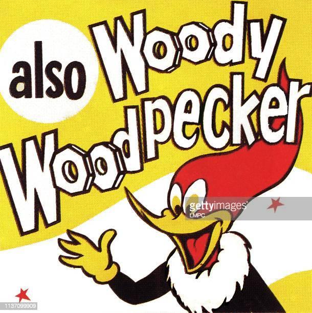 ペッカー ウッド