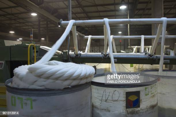 Wool are prepared to be packed for export at Tops Fray Marcos factory in Libertad San Jose 90km west from Montevideo on December 1 2017 Located...