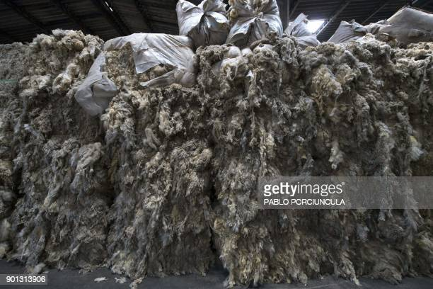 Wool are seen at Tops Fray Marcos factory in Libertad San Jose 90km west from Montevideo on December 1 2017 Located between Brazil and Argentina...