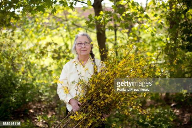 Woolwich artist Susan Perrine poses for a portrait with some Forsythia branches that she uses in some of her art Perrine works with found materials...
