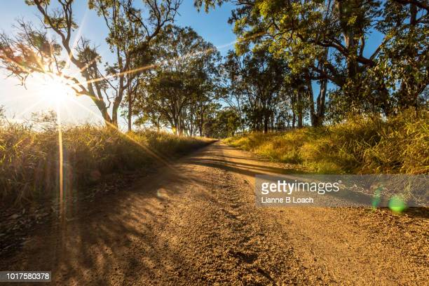 wooroolin road 2 - lianne loach stock pictures, royalty-free photos & images