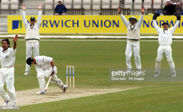 Worcestershire successfully appeal for Hampshire's Robin Smith lbw off Alamgir Sheriyar during County Championship match at Hampshire's new Rose Bowl...