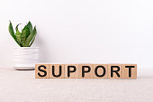 SUPPORT word concept written on wooden blocks lying on a light table with a flower in a flowerpot on a light background