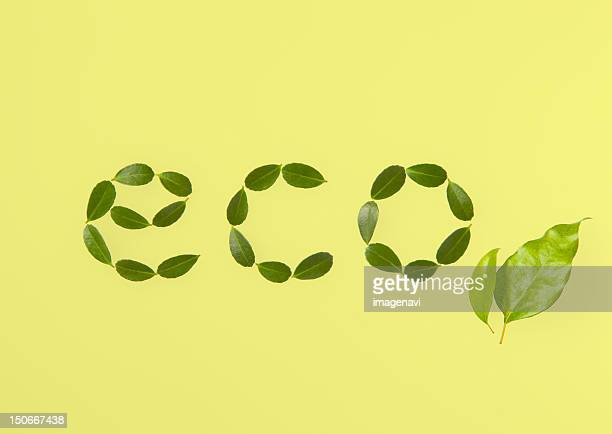 Word 'eco' made of leaves