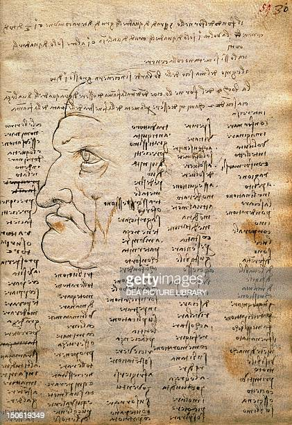 Word list and male profile from The Codex Trivulzianus 14781490 by Leonardo da Vinci folio 30 recto in sepia ink page 59 in red ink