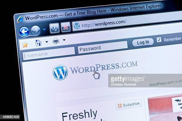 WordPress - Macro shot of real monitor screen