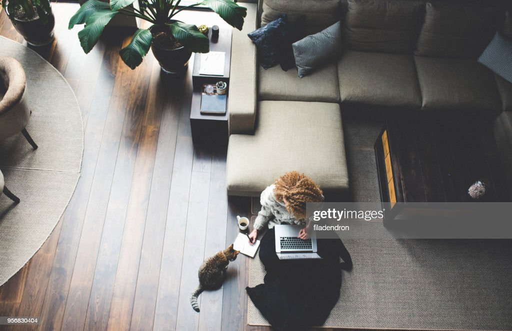 Work at home : Stock Photo