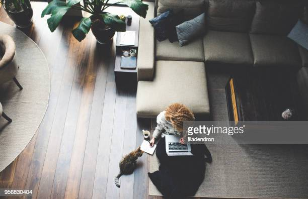 work at home - remote work stock pictures, royalty-free photos & images