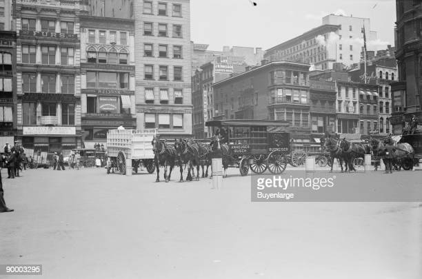 Work Horse Parade showing Anheuser Busch team in obstacle test New York
