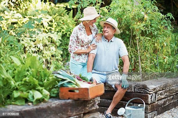 Lavoro per chi non sa come garden.