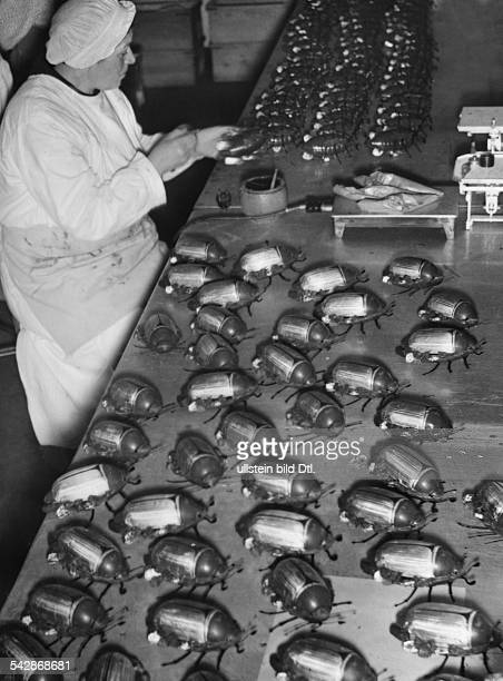 Work life In the chocolate factory production of chocolate cockchafers undated Photographer Helmut Möbius undated probably 1930 Published by 'Das 12...