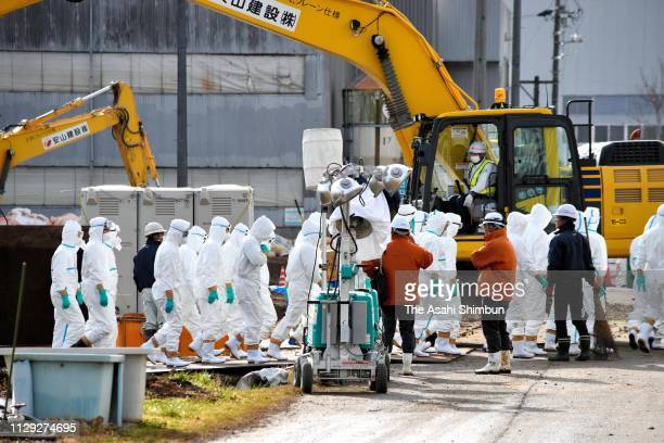 Work to cull infected pugs continues on February 7, 2019 in Toyota, Aichi, Japan.