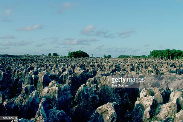 Worked out phosphate fields on the island of Nauru in the South Pacific