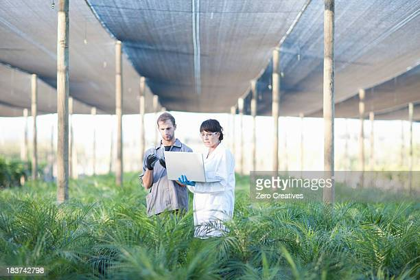 Worker and scientist with laptop in plant nursery
