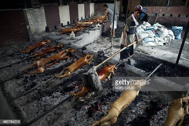 A worker applies oil to evenly cook roasted pigs in Manila on December 23 for the busy holiday season Lechon or roasted pig has always been a regular...
