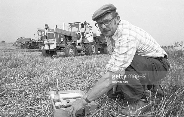 worker at a collectivised farm during the grain harvest measuring the moisture of a grain field