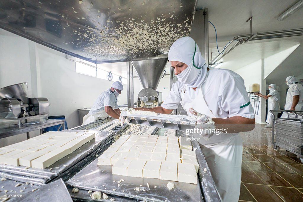 Worker at a dairy factory : Stock Photo