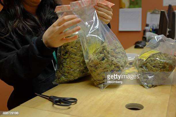 A worker at a dispensary handles bags of marijuana delivered by the courier service CannaRabbit LLC in Louisville Colorado US on Friday March 27 2015...