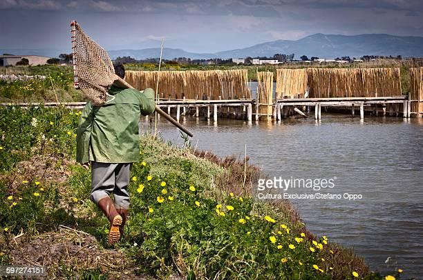 worker at mullet fishpond, oristano, sardinia, italy - oristano imagens e fotografias de stock