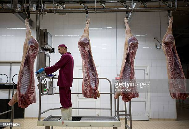 A worker butchers pig carcasses hanging from a conveyor system at the slaughterhouse operated by AVK Exima ZAO in Galaktionovsky village near Orel...