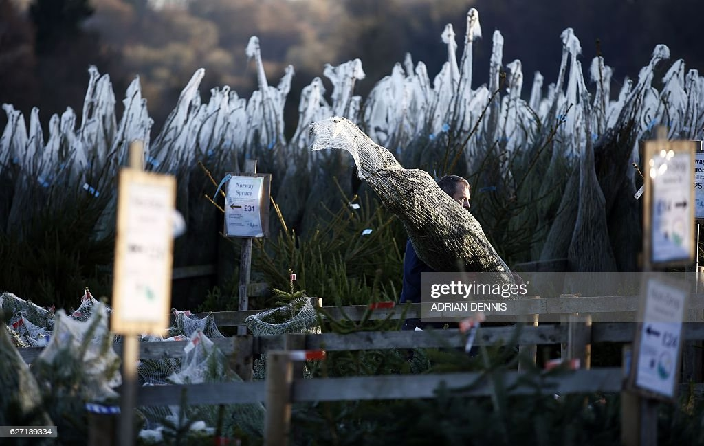BRITAIN-CHRISTMAS-FEATURE : News Photo