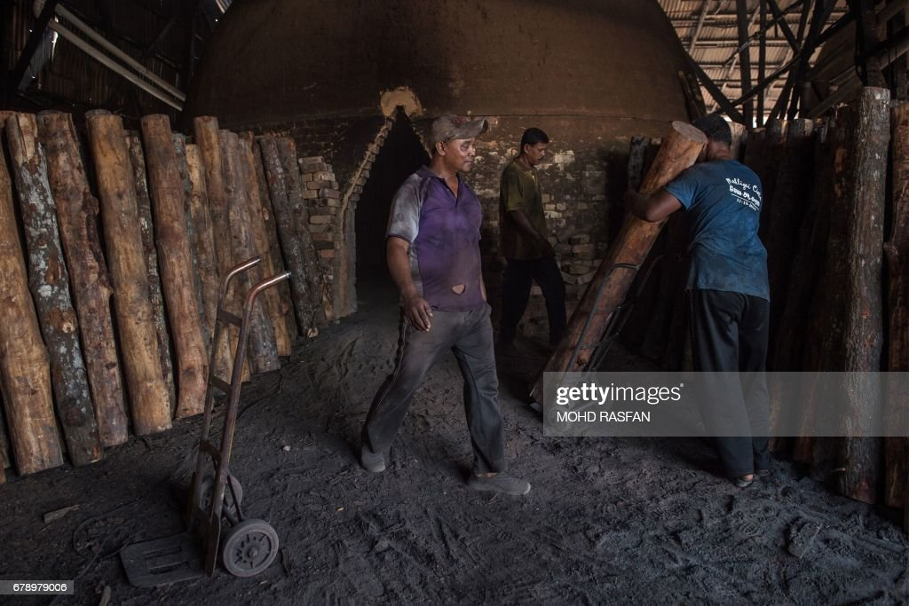 A worker carries mangrove logs into the charcoal kiln in a    News