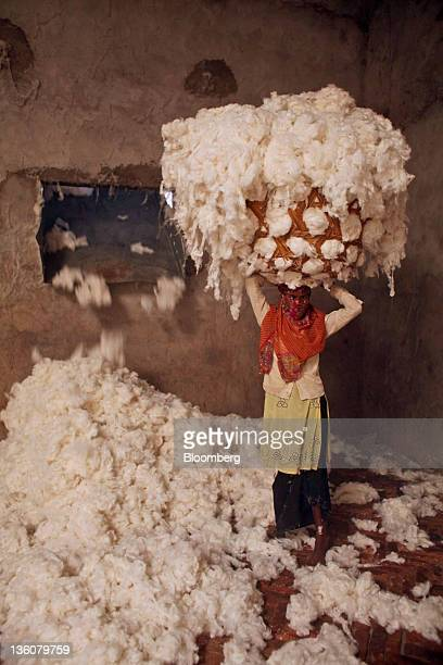 A worker carrying a bundle of cotton stands for a photograph in a ginning mill in Wankaner India on Sunday Dec 18 2011 Cotton sales by growers in...
