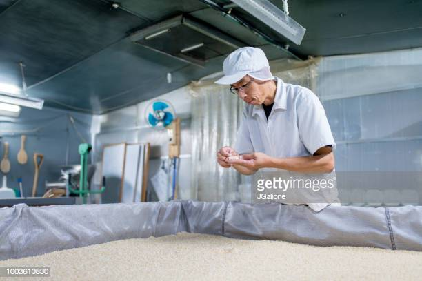 Worker checking the quality of rice in a food processing factory
