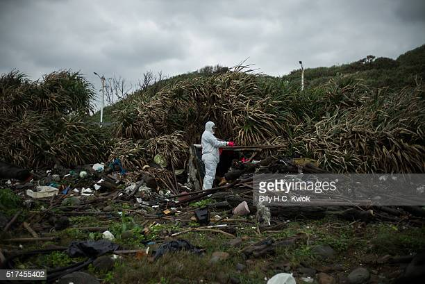 Worker clean a coastal area affected by an oil spill near Taiwan's north coast on March 25, 2016 in Shihmen, Taiwan. An oil slick from a container...
