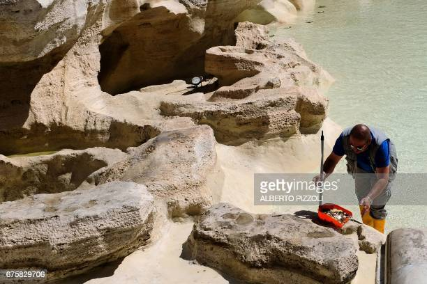 A worker collects coins in the Trevi Fountain on May 2 2017 in Rome during the usual monthly cleaning The total value of coins collected in a year...