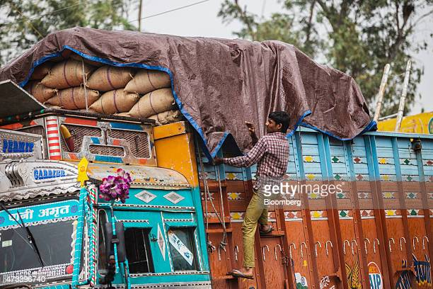 A worker covers sacks of wheat on a truck with a tarp to protect the grain from unseasonal rain at the Khair Grain Market in Aligarh Uttar Pradesh...