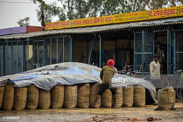 A worker covers sacks of wheat with a tarp to protect the grain from unseasonal rain at the Khair Grain Market in Aligarh Uttar Pradesh India on...