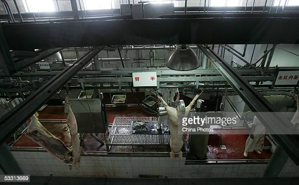 Worker cuts a slaughtered pig at a production line in a workshop of Beijing Resource Group on August 1, 2005 in Beijing, China. China has launched...