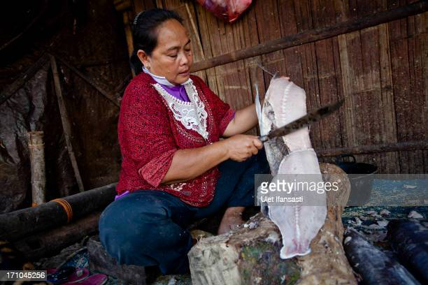 A worker cuts fish into pieces before it is dried and smoked at a smokehouse on June 20 2013 in Semarang Indonesia Smokehouses line the area of...