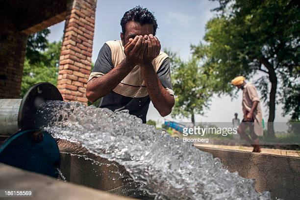 A worker drinks water from an open water source after spraying cotton plants with pesticides on the farm of Jarnail Singh in Jajjal village Punjab...