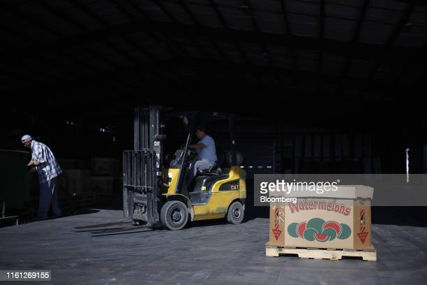 A worker drives a forklift past a pallet of freshly harvested watermelons at Frey Farms Inc in Poseyville Indiana US on Thursday Aug 1 2019 Overall...