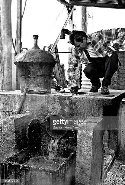 A worker during a raki production cleaning the distillery on October 23 2009 in Heraklion Greece Raki is a distillate of the mash from the wine...