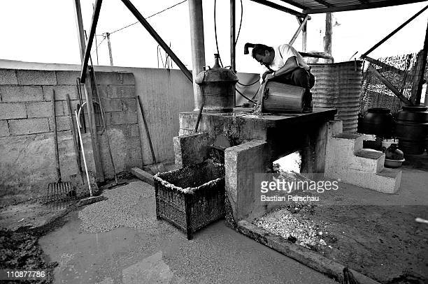 A worker during a raki production filled the mash into the distillery on October 23 2009 in Heraklion Greece Raki is a distillate of the mash from...