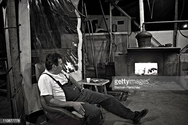 A worker during a raki production take a break and looks in the fire at the distillery on October 23 2009 in Heraklion Greece Raki is a distillate of...