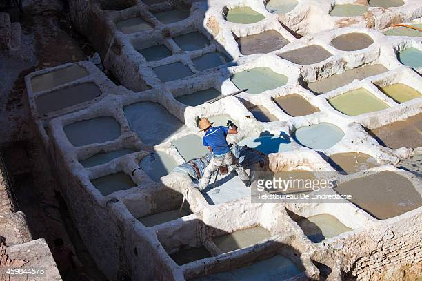 CONTENT] A worker dying leather hides at the leather tanneries of Fez Morocco early in the morning