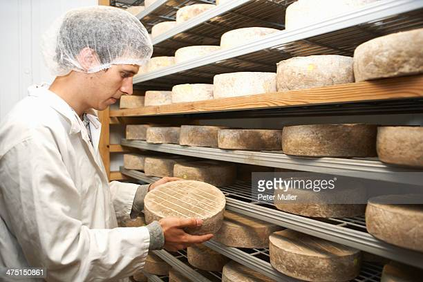Worker examining cheese round at farm factory