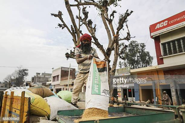 A worker filters grain on the back of a truck at an Agricultural Produce Market Committee wholesale market in Jalandhar Punjab India on Saturday Jan...